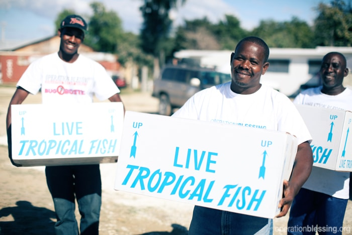Tropical fish are delivered to Haiti
