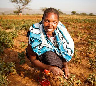 Helping the Masai Grow Their Own Food