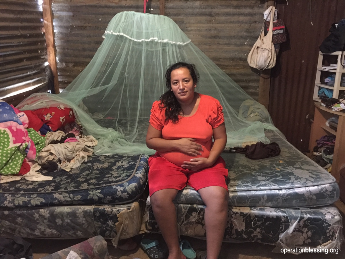 Mosquito nets, like this one, will help protect pregnant women from Zika