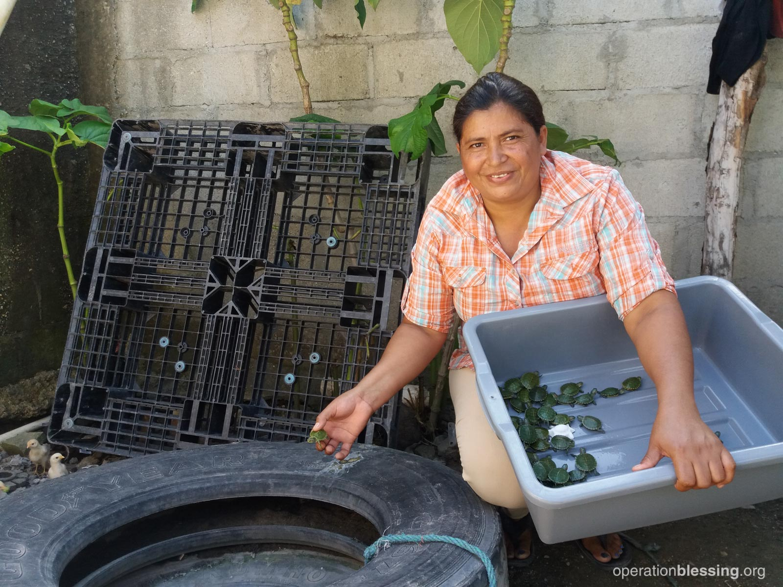JUNE: A pilot program in Honduras aims to stop the spread of mosquito-borne diseases like Zika, chikungunya, and dengue fever using biological predators like turtles, copepods, and fish that eat mosquito larvae.