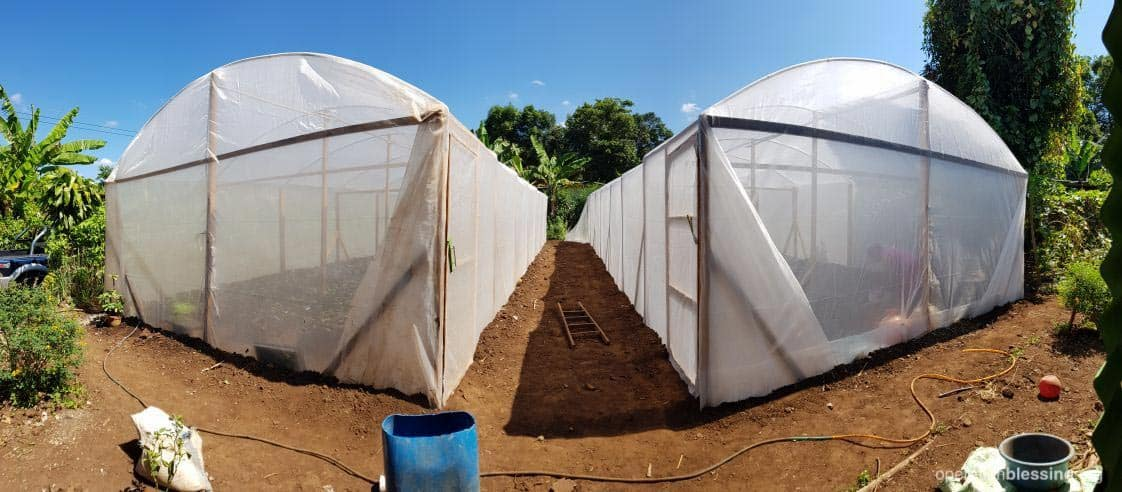 Greenhouses provided by Operation Blessing partners for Berta's community.