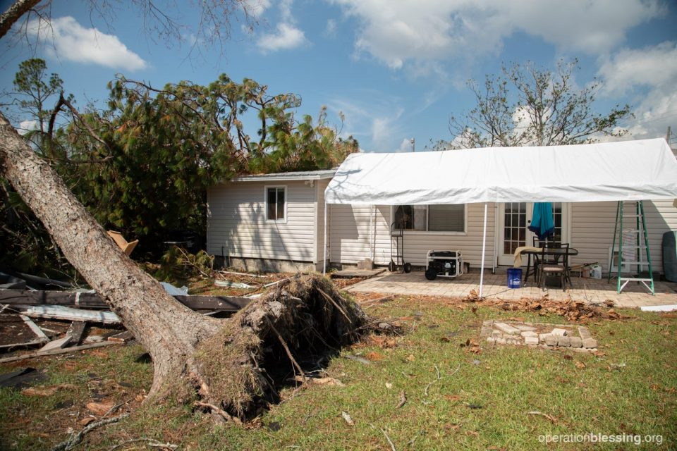 Ed's damaged home with fallen trees surrounding it.