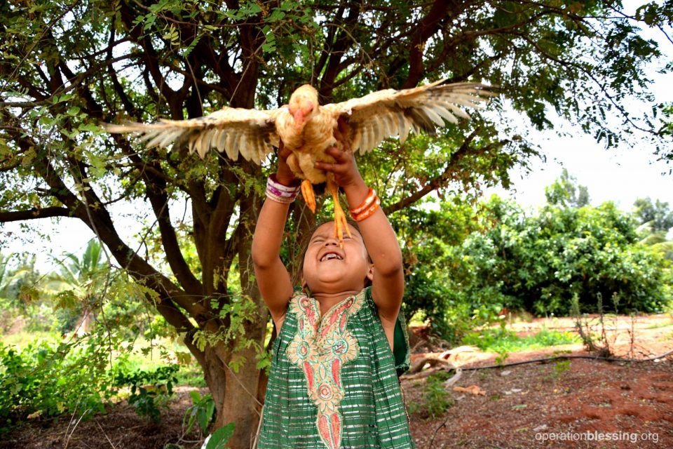 Deepana, now thriving, releases a chicken to fly.