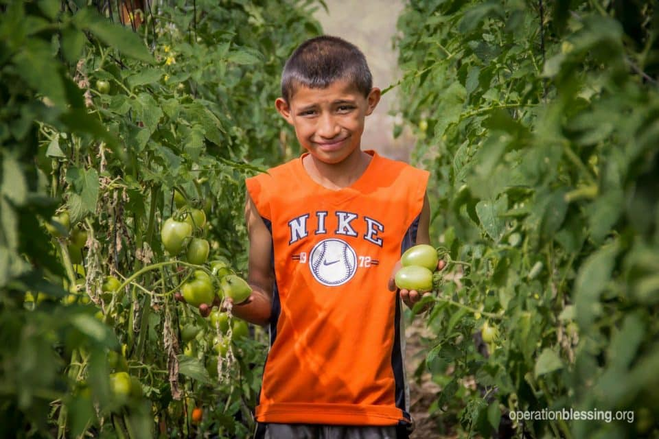 Boy stands in field of vegetables as part of Operation Blessing's efforts to fight hunger.