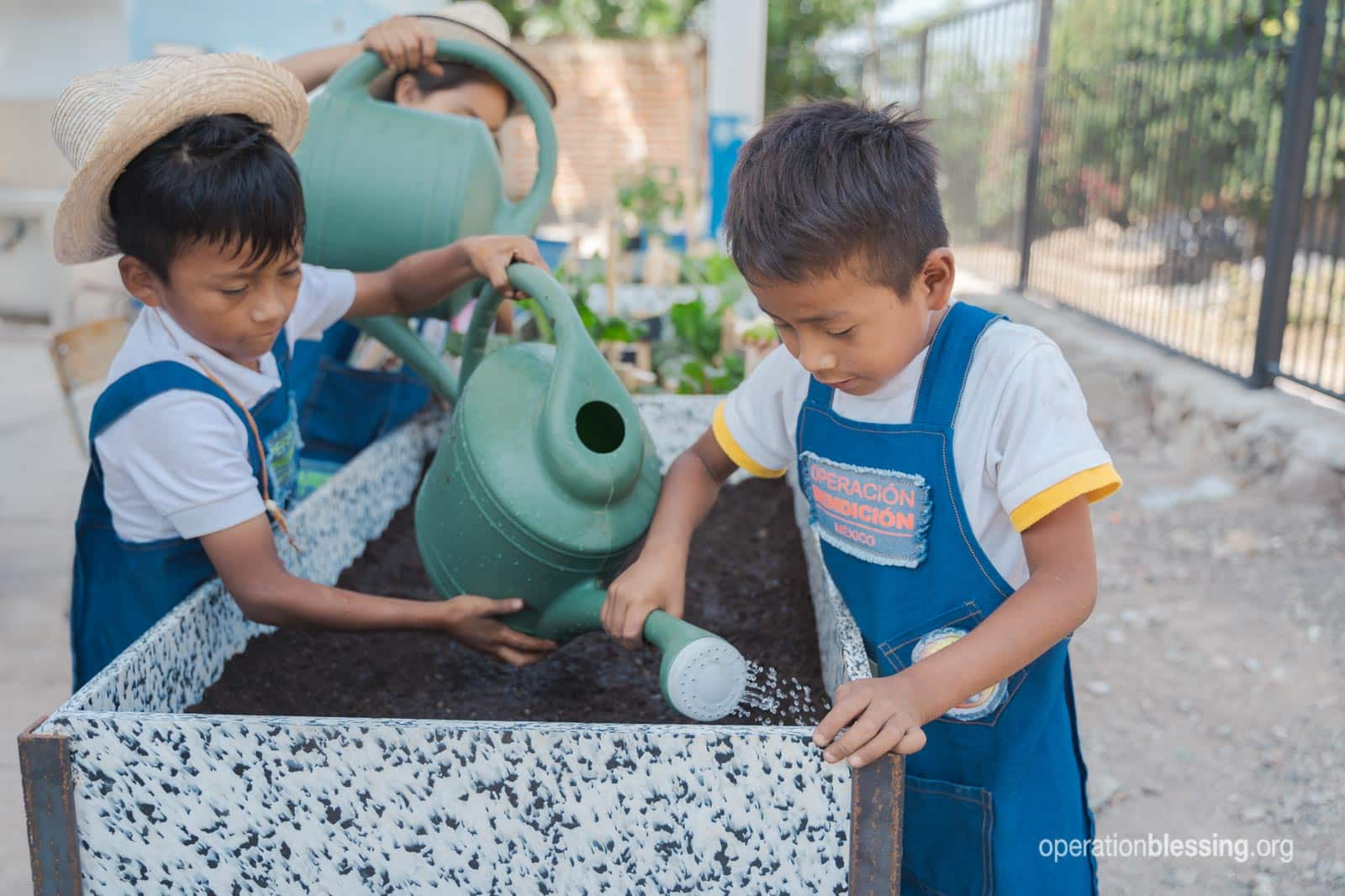 Mexican school children growing nutritious vegetables for hunger relief.