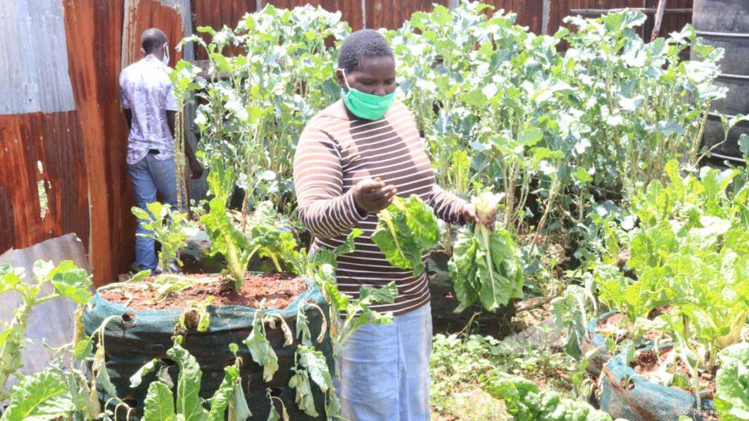 struggling in Kenya with the coronavirus